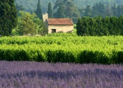 Tourismus Provence